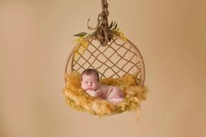 Hanging basket 03 FINAL